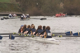 WJ18 8+ Yorkshire Head