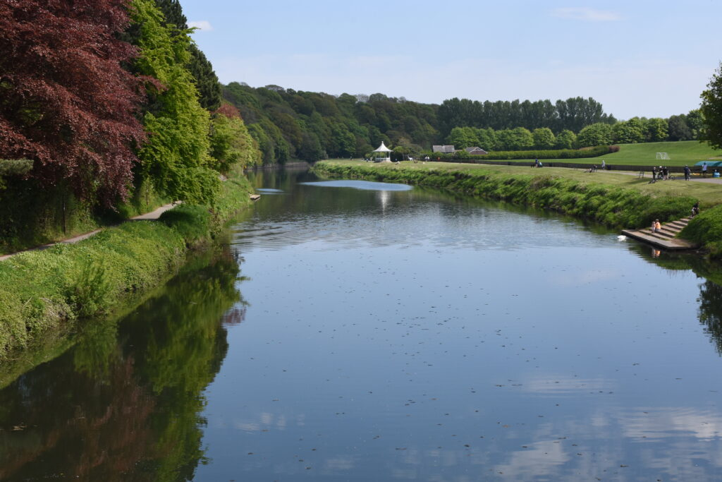 River Wear in May 2020